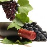 Din secretele vinului - sursa foto: dreamstime.com