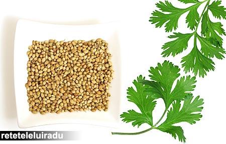 Coriandru - fructe (seminte) si frunze (cilantro)