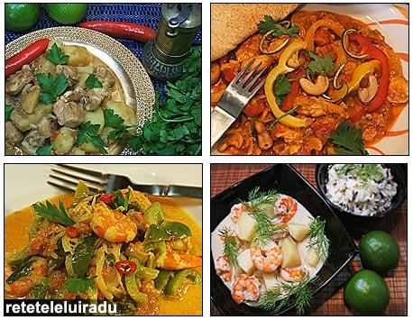 Curry-uri indiene si sud-est asiatice