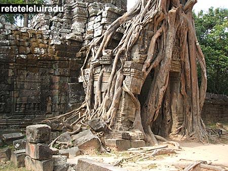 Angkor - Templul Ta Som