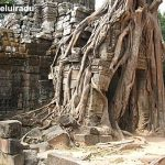 Uluitoarea Cambodgie – partea 1
