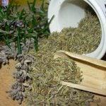 Herbes de Provence – aromele unei bucatarii exceptionale