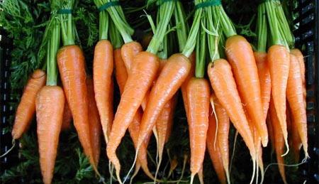 Sursa foto: www.mariquita.com