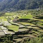 Bucataria filipineza intre chinezi, spanioli si americani – partea 1
