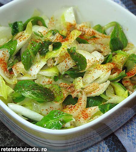 salata de andive cu seminte1 - Salata de andive cu seminte 1 - Retetele lui Radu