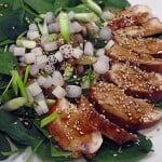 Salata de pui cu susan si legume