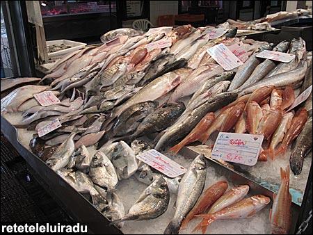 Mercado da Ribeira - Lisabona
