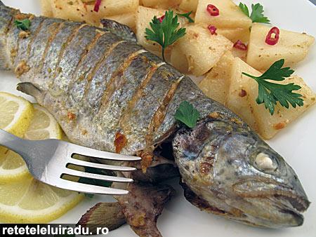 pastrav7ARpasta - Pastrav cu pasta 7AR si pepene galben 1 - Retetele lui Radu