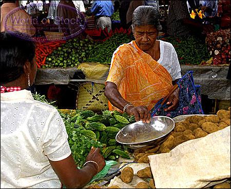 MauritiusPiata2 - Mauritius – bucătărie fără frontiere (2) 2 - Retetele lui Radu