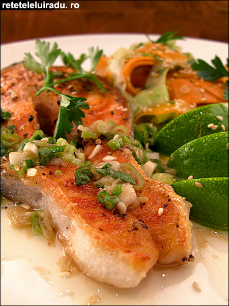 Somon cu salata asiatica - Somon cu salata asiatica 1 - Retetele lui Radu