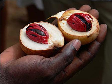 """nutmeg - Grenada - o bucătărie """"explozivă"""" (2) 2 - Retetele lui Radu"""