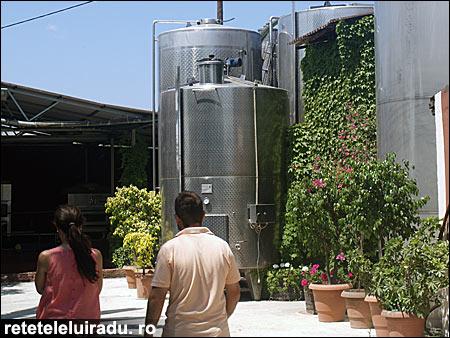 vin6 - O săptămână în Zakynthos (4) 6 - Retetele lui Radu