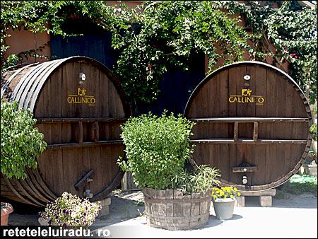 vin7 - O săptămână în Zakynthos (4) 7 - Retetele lui Radu
