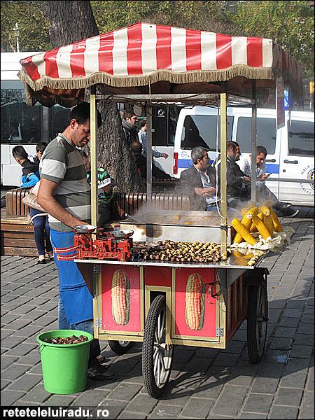 IstanbulCastane - Între Occident şi Orient - scurt sejur la Istanbul (2) 5 - Retetele lui Radu