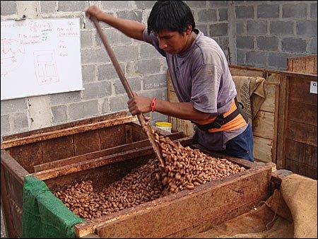 ciocolata07 - Pe scurt despre ciocolată (1) 7 - Retetele lui Radu