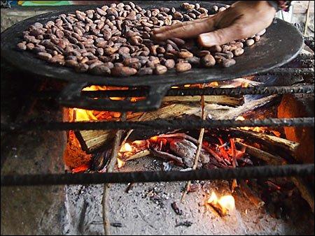 ciocolata08 - Pe scurt despre ciocolată (1) 8 - Retetele lui Radu