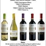 Degustare de vinuri: Chile într-un pahar