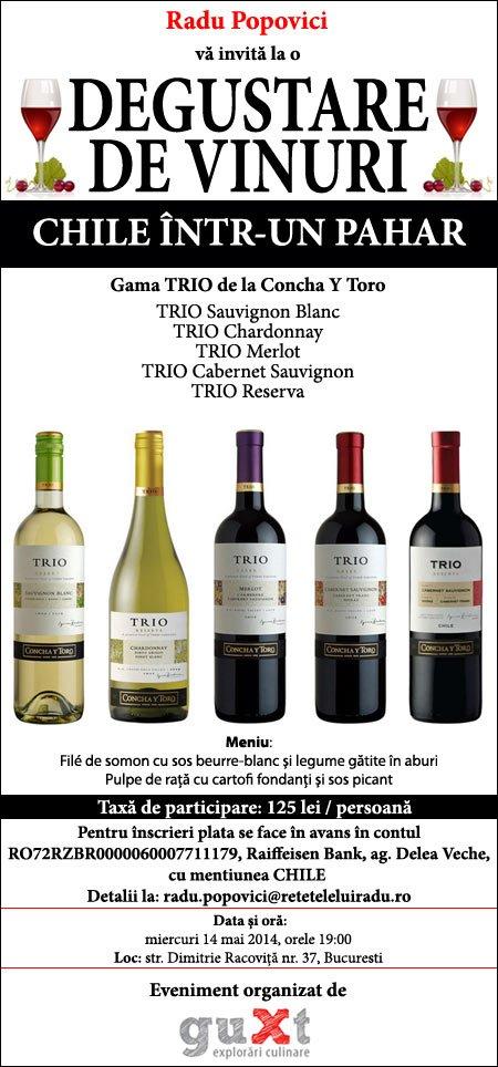 Chile intr un pahar1 - Degustare de vinuri: Chile într-un pahar 1 - Retetele lui Radu