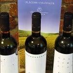 """A fost """"Food & Wine Pairing"""": vinuri albe şi tinere de la Corcova"""