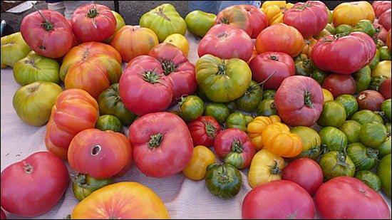 rosii - sursa foto: thedivinedish.com