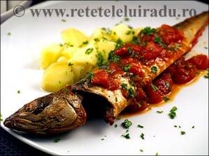 Macrou cu sos de rosii si cartofi natur - Macrou cu sos de rosii si cartofi natur 1 - Retetele lui Radu