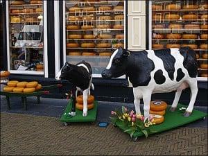 amsterdamBranza01 - Amsterdam pe fugă (2) 3 - Retetele lui Radu