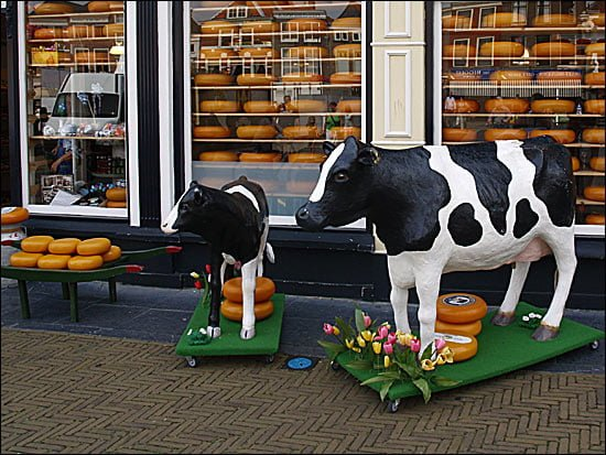 Delft - magazin Cheese and more
