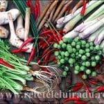 Cum se gătesc curry-urile thailandeze (1)