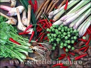 gaeng - Cum se gătesc curry-urile thailandeze (1) 10 - Retetele lui Radu