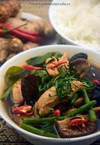 Curry thailandez de jungla cu pui Gaeng pa gai - Curry thailandez de jungla cu pui (Gaeng pa gai) 1 - Retetele lui Radu