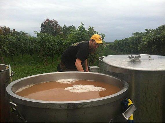 Beri lambic, fermentatie - sursa foto: www.jasminebudak.com