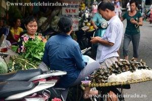 papaStrada - Vietnam subiectiv (3) 1 - Retetele lui Radu